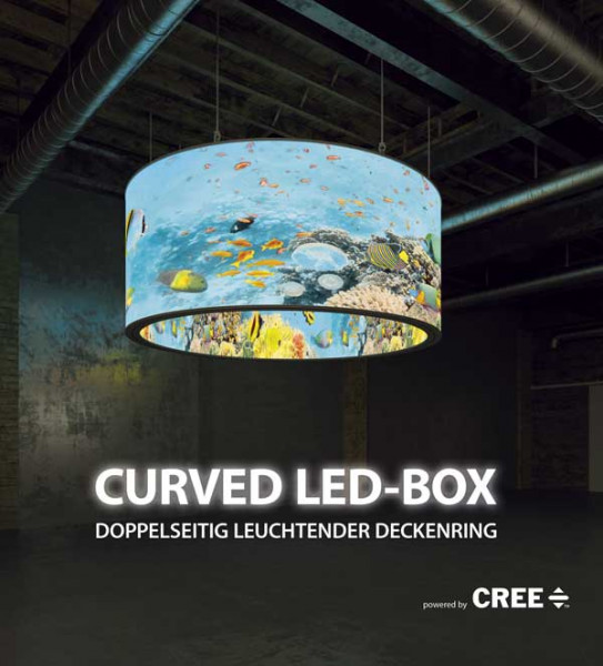 Curved LED-BOX Deckenring